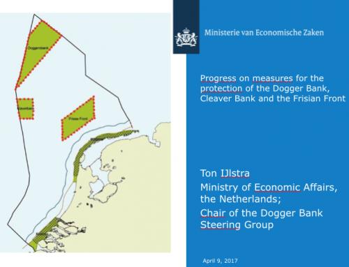 John Spee (NHN): 'De Noordzee kun je zien als 1 groot industrieterrein'