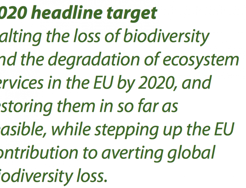 Brussel bestrijdt 'biodiversity loss' terwijl soortenrijkdom EU sterk groeit