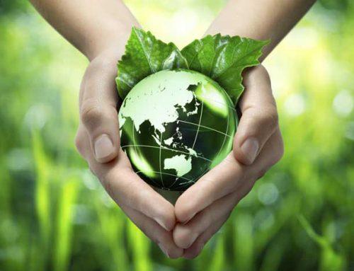 Planeet gered, welvaart weg, vrijheid kwijt