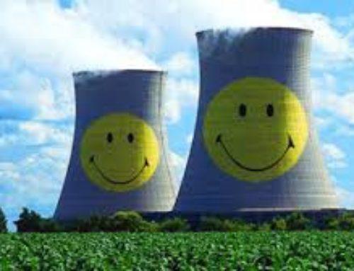 De olifant aan de tafel van Wiebes is … kernenergie