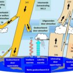 Zoninstraling en fytoplankton