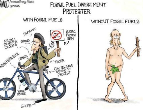Klimaatwaan