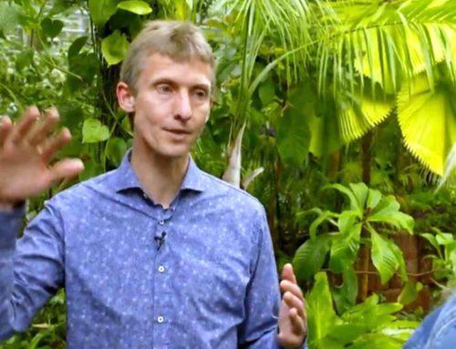 Crowdfunding: onderzoeksproject hittegolven in Nederland