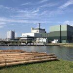 Klimaat en tegels lichten - vervolg: biomassa