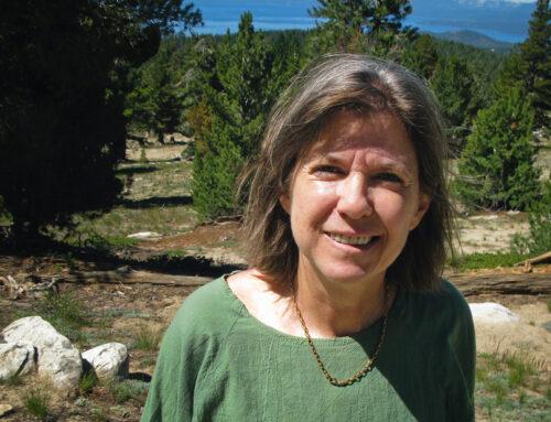 Judith Curry over klimaatconferentie Madrid