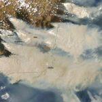 Worden de bosbranden in Australië erger door de door de mens veroorzaakte klimaatverandering?