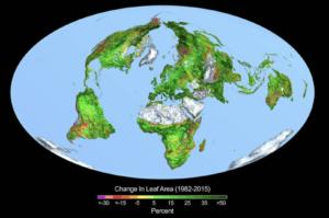 De mondiale CO2-huishouding: mooie getallen, geveinsde zekerheid, maar hoogst twijfelachtig fotosynthese ensoil respirationdomineren de CO2-huishouding