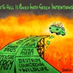 Matt Ridley: Tien redenen waarom groene agenda van Boris gewoon fout is