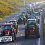 De Stikstofcrisis [2]: Wat is er mis met het stikstofbeleid?