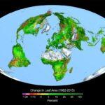 Milieu slachtoffer van klimaatbeleid