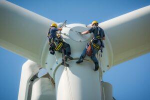 Raad van State legt ondeugdelijkheid van de RES-besluiten bloot. Beren op de weg voor windenergie Democratisch Energie Initiatief, DEI